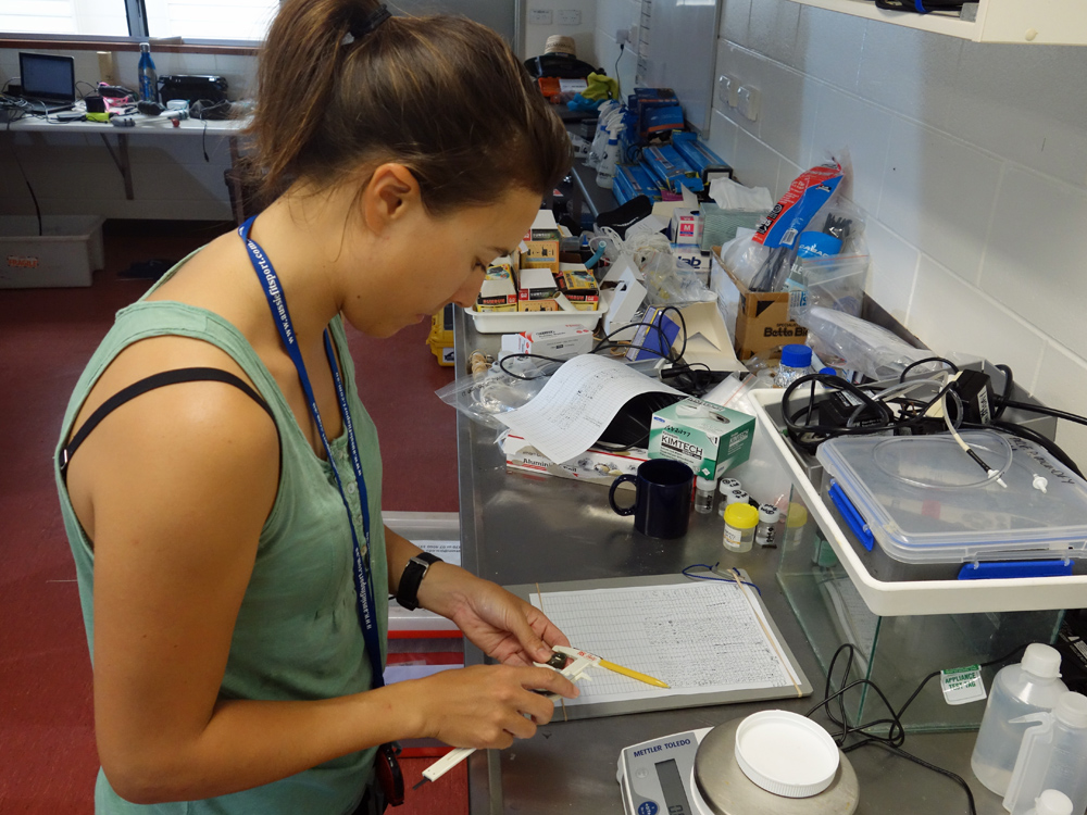 One of the paper's authors, Dr Sue-Ann Watson, at work in the LIRS lab.